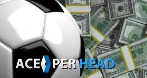 Pay Per Head Dummies