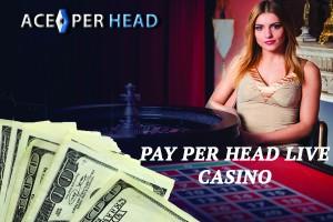 Pay Per Head Live Casino