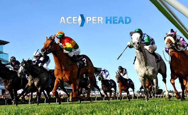 Price Per Head Horse Racing