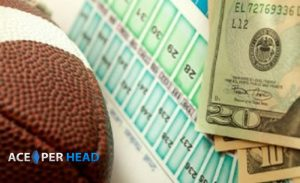 Become a Sports Bookie