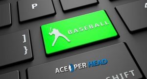 Baseball Bookie Software