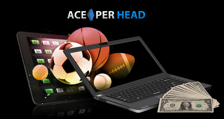 Best Betting Software