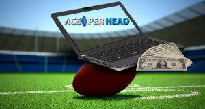 Football Betting Software