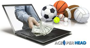 Software for Bookies