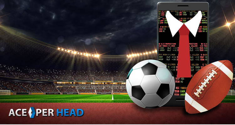 Setting Up A Per Head Sportsbook