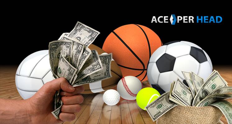 Sportsbook Business Model