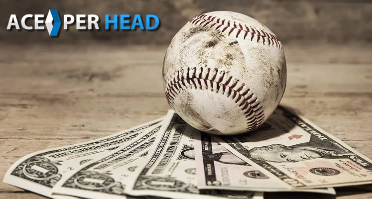 Pay Per Head Bookie Software