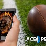 Create a Bitcoin Sportsbook