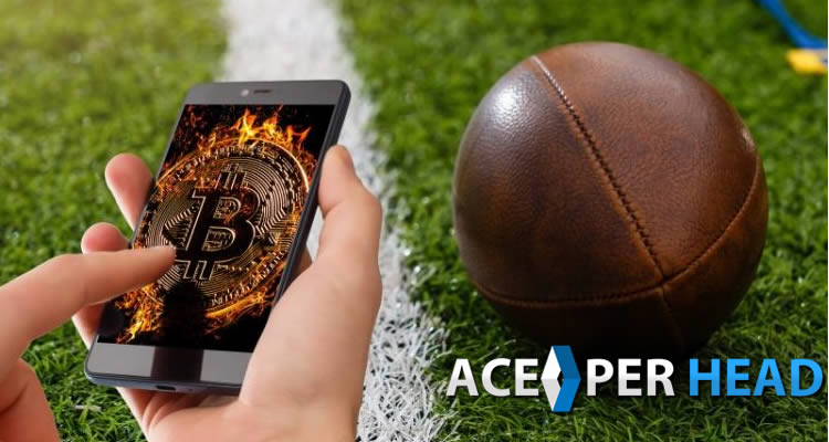 Bitcoin Sportsbook Software