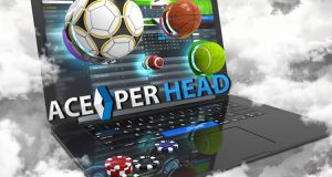 Best Software for Bookies