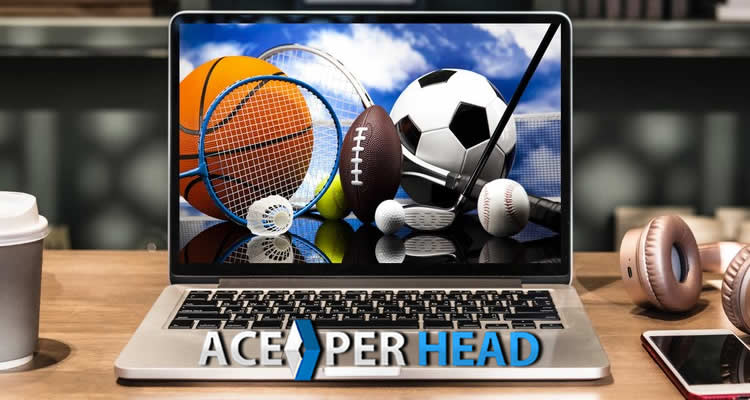 sports betting shop software