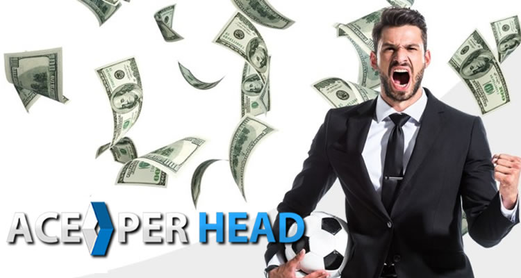 Can you Make a Living from Sports Betting
