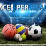 Can Sports Gambling Be Profitable?