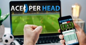 How Does Sports Betting Work?