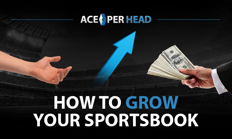 How to Grow Your Sportsbook