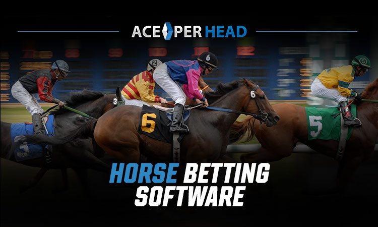 Horse Betting Software