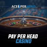 What is a Pay Per Head Casino?