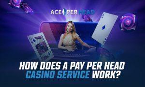Pay Per Head Casino Services