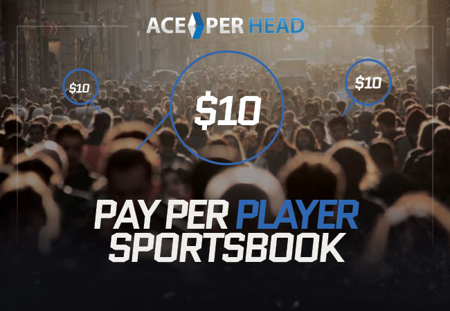 Pay Per Player Sportsbook
